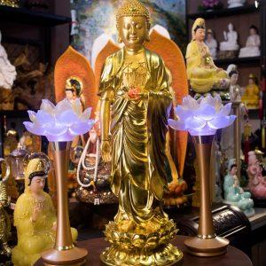 Phật A Di Đà dát vàng tịnh tông