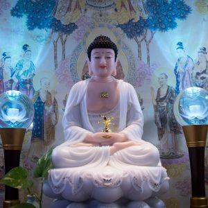 Mẫu Tượng Phật Dược Sư