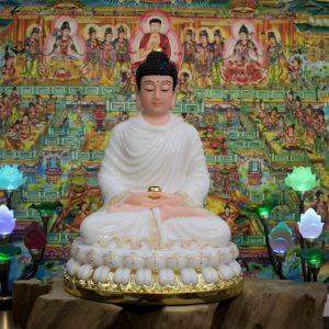 Phật Thích Ca tĩnh tâm