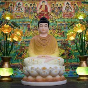 Tượng Phật Bổn Sư tĩnh tâm
